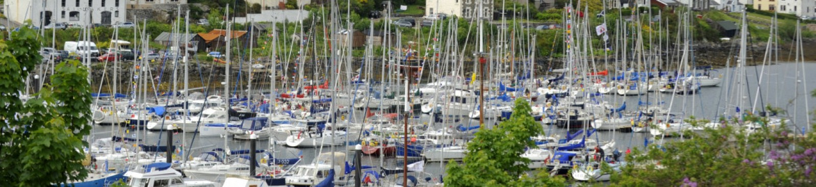 Scottish Series entrants in Tarbert Harbour